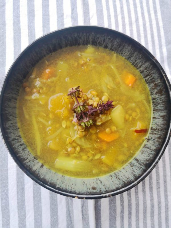 Estofado de lentejas con verduras