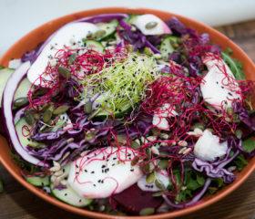 Los 10 alimentos saludables que no pueden faltar en tu mesa este verano (Parte I)