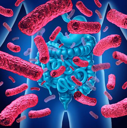 ¿CÓMO CUIDAR TU MICROBIOTA INTESTINAL PARA TENER MÁS SALUD?